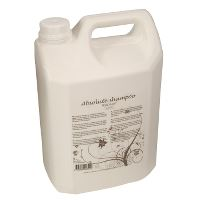 WeCare® Absolute Shampoo, Nordic Swan Ecolabel, no perfume, 5 L